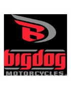 Batterie Moto Big Dog en Stock - Manetco